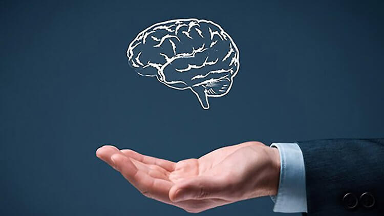 Entrepreneur's Cheat Sheet: Intellectual Property Insurance
